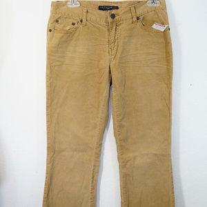 sz 12 American Eagle Corduroy Pants tan New